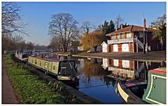 Winter Sunshine in Cambridge G16 002 (Davey's Shots) Tags: rivercamg16 narrowboats moorings cambridge rivercam boathouse wintersun baretrees refelctions cambridgeblue