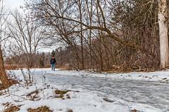 Icy Path (fotofrysk) Tags: walker path ice snow trees bush germanmillssettlerspark park canada ontario thornhill nikond7100 sigma1750mmf28exdcoshsm 201701058871