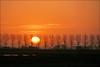 De zon komt langzaam los van de horizon (TeunisHaveman) Tags: groningslandschap hoeksmeer loppersum luchten nature landscape landschap natuur sunrise zonsopkomst 100 panoramio501850462873034