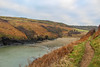 Clifftop - Pembrokeshire (otikirae) Tags: wales pembrokeshire coast uk beach cliffs sea