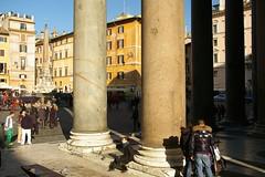 Rome 2010 021
