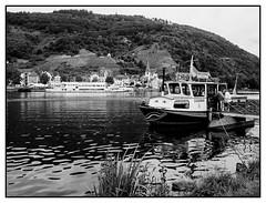 Ferry 'cross the Mosel (Steve U) Tags: water ferry river germany boat crossing cross alf placid mosel bullay moesel