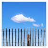 Thoughts are free ... (sdc_foto) Tags: sdcfoto color pentax k1 clouds sky blue fence freedom pentaxflickraward
