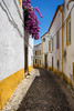 A Portuguese Street (Pikaglace) Tags: sony a7 evora portugal europe street architecture pavement rue pavée vertical flowers lilac purple yellow white house unesco world heritage patrimoine mondial