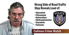 Wrong Way Vehicle Triggers Controlled Substance Seizures Arrest (cullmantoday) Tags: wrong way vehicle triggers controlled substance seizures arrest christopher taylor falkville cullman police department county alabama