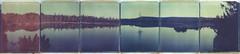 Calm Lake, Lonely Tree (Bastiank80) Tags: lonelytree calmlake magic czech diptych 669 polaroid