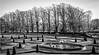 Bowes Museum Gardens . (wayman2011) Tags: fujifilmxt10 lightroom wayman2011 bwlandscapes mono trees people gardens parks pennines dales teesdale barnardcastle bowesmuseum countydurham uk
