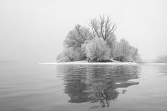 a jég birodalma (hatja) Tags: budapest buda pest duna újpest angyalföld hó tél snow winter snowfall wintertime ice hiver river waves bw bnw blackandwhite blackwhite