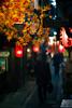 autumn leaves of shinjuku alley (N.sino) Tags: m9 summiluxm50mm shinjuku alley bar 新宿 思い出横丁 赤提灯 夕暮れ時 紅葉