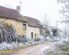 Abandoned farm buildings, the Nièvre, January 2017 (serial_snapper) Tags: républiquefrançaise building landscape winter nièvredépartement bourgognefranchecomtéregion ciez bourgognefranchecomté france fr