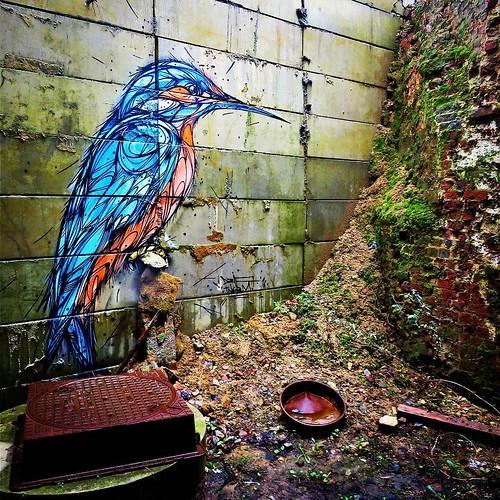 Another #beauty by #dzia at #groenendaal #trainstation - #brussels #Belgium #streetart #graffiti #streetartbel #streetart_daily #urbanart #urbanart_daily #graffitiart_daily #graffitiart #streetarteverywhere #mural #wallart #bxl #visitbrussels #putabirdoni