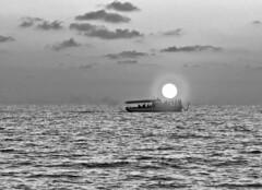 Sun catchers (Sargis davtyan) Tags: sea sky bw bliss sun sunset