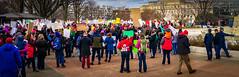2017.01.29 Oppose Betsy DeVos Protest, Washington, DC USA 00214