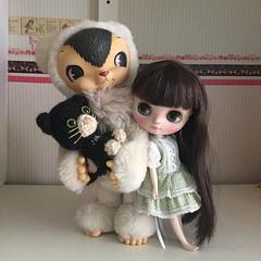 Friends spend time together #toysfield #toysfieldkuma #middieblythe #middiecustom #customblythe #custommiddie #amigurumi #cat #doll #toy #crochet