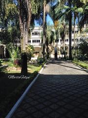 UNISAL Lorena-SP (Marta Felipe) Tags: flower arquitetura ar jardim rua ao arvores livre lorena faculdade paisagismo unisal