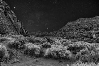 snow-canyon-BW-2590
