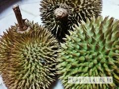Durian Malaysia (radi0head pix'el) Tags: food fruits fruit asian asia malaysia durian spike local kualalumpur kl spikes asean stinks spikyfruit