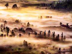 pinggan village (sandilesmana28) Tags: sunrise pinggan village bali island indonesia fog cloud slow speed nature landscape orange persepective
