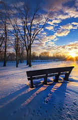 The Light That Beckons (Phil~Koch) Tags: rural fineart arts shadows winter snow ice bench frozen trees
