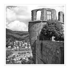 Heidelberg II (Splitti68) Tags: europa europe deutschland germany badenwürtenberg heidelberg schloss heidelbergerschloss quadrat square blackwhite schwarzweis rahmen splitti splitti68 splittstöser splittstoesser