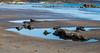 Rock Pool - Saundersfoot - Pembrokeshire (johnlawson367) Tags: britain pembrokeshire rockpools saundersfoot uk wales xmas2016 beach coast rocks sea
