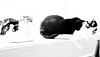 3 cats relaxing monochrome (PDKImages) Tags: cat black ragdoll monochrome pet animal feline blackcat asleep eyes calming
