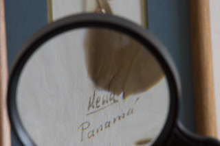 20170120 Through the Magnifying Glass - in Explore