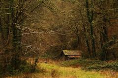 The Cabin (Vanessa RG (Vanessa Valkyria)) Tags: asturias landscape paisaje nature naturaleza forest woods bosque