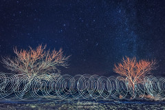New Year's Eve Light Painting (inlightful) Tags: night nightsky stars astronomy lightpainting light nature outdoors milkyway sky astrophotography astrolandscape rural trees baretrees winter southwest socorrocounty newmexico