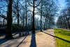 Winter's light. (Azariel01) Tags: 2016 belgium belgique bruxelles brussels parc park winter hiver path allée alley soleil sun city ville