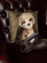 Bit of Telly? (zaramcaspurren) Tags: charliebears teddybear teddybears teddies stuffedtoy stuffedtoys stuffedanimal softtoys softtoy plush plushtoy plushies plushtoys plushie