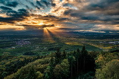 Autumn Sunrise - Taken 2 (der LichtKlicker) Tags: kaiserstuhl2016 eichelspitzturm panorama tower eichelspitz kaiserstuhl baden breisgau pano trees bäume wald forest schwarzwald black view blick sunrise sonnenaufgang clouds cloudporn sun sonne sky himmel landscape landschaft freiburg emmendingen deutschland europe europa südbaden badenwürttemberg fujifilm fuji hdr xt2 sunrays sonnenstrahlen xf1024mm sunbeam sunbeams cloud