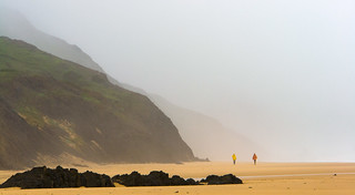 Fog at the Beach