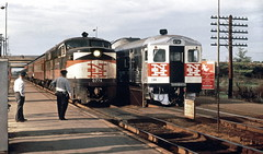 New Haven Railroad ALCO DER-3a class PA-1 locomotive # 0766 with passenger train, & RDC-3 # 126, is seen while stopped at the Route 128 Station platform, near Boston, early 1960's (alcomike43) Tags: bostonmassachusetts station depot platform route128station employees crewmembers tracks newhavenrailroad newyorknewhavenhartford rails ties mainline conventionaljointedsectionrail roadbed ballast rightofway highwayoverpass railroads trains passengertrains commutertrains localtrains regionaltrains passengercars pennsylvaniarailroad budd rdc3 126 locomotive engine diesel der3aclass dieselengine diesellocomotive dieselelectriclocomotive pa1 alco 0766 photo photograph slide color duplicate old historic vintage classic