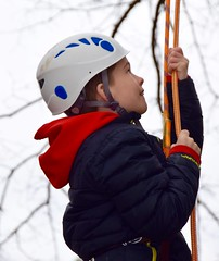 Boy with blue jacket in tree (Montgomery Parks, MNCPPC) Tags: treeclimbing woodsidepark january2017 2017