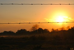 HFF Sunrise!! (Gio-Photography) Tags: nikon d3000 dslr club fence friday