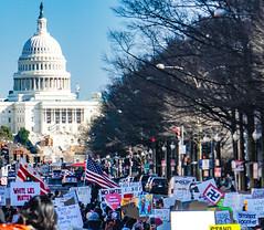 2017.02.04 No Muslim Ban 2, Washington, DC USA 00514