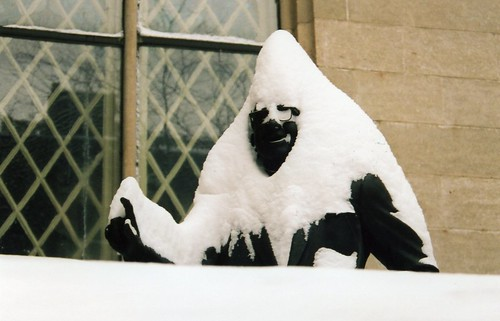 Statue, after the blizzard