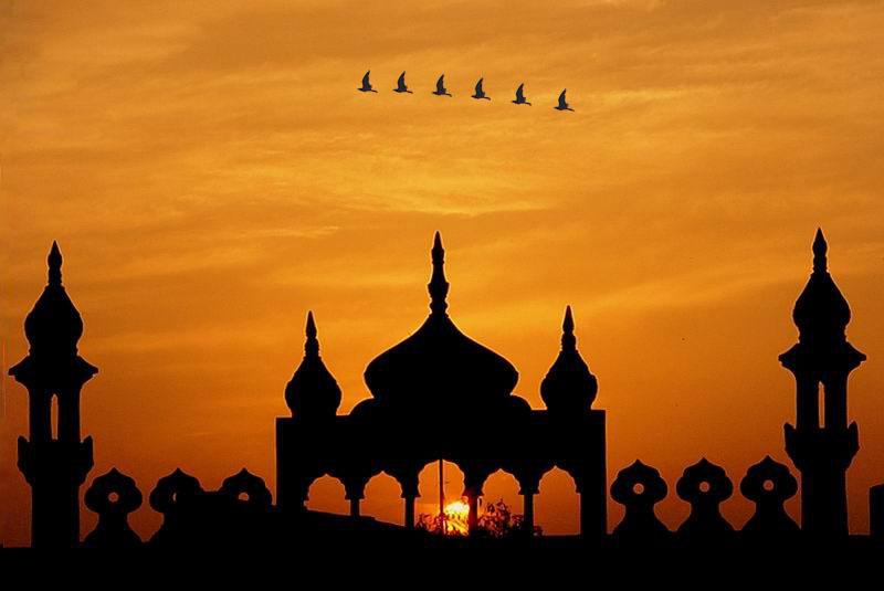 loxton muslim Jamiatul ulama kzn council of muslim theologians home cyber crime an sa crisis dave loxton, told reporters in.