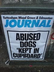 ABUSED DOGS 'KEPT IN CUPBOARD'