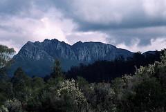 Mt Farrell 2 (williewonker) Tags: mountain landscape mt australia mount western tasmania farrell tullah specland speclandscape achallengeforyou