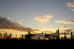 anoitecer (corbata1982) Tags: sky sun sol brasil fence contraluz lafotodelasemana gate portão céu rs pampa fronteira porteira corbata1982 arroiomau lfscontraluces