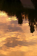 gold (Yersinia) Tags: uk greatbritain sunset england lake london public catchycolors geotagged europe unitedkingdom britain eu explore gb sw safe guessed battersea guesswherelondon londonguessed southlondon nst wandsworth boatinglake sunriseandsunset batterseapark faved travelcard top50 sw11 londonparks zone2 londonset londonbylondoners ccnc southoftheriver interestingness380 photographical guessedbybenpatio yersinia postcoded londonpool gwl2006 geo:lat=51479586 geo:lon=0151577 casioexz110 postedbyyersinia inygm southlondonpool christmasmm southlondonset londonparksset londonparkspool gwlg wandsworthpool londonboroughcollection