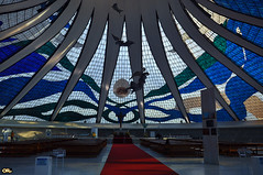 Under the dome (Otacílio Rodrigues) Tags: arquitetura oscarniemeyer marianneperetti vitral stainedglass igreja church catedral cathedral anjos angels alfredoceschiatti moderna modern brasília capital distritofederal federaldistrict concreto concrete
