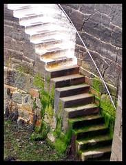 Steps (Chris_J) Tags: guernsey steps step harbour sea stpeterport channelislands seawead seaweed kodak dx6340 kodakdx6340 pointshoot pointandshoot kodakpointandshoot kodakpointshoot amateur