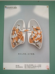 lungs (highglosshighs) Tags: 2005 japan poster cigarette august highschool  toyama antismoking lungs fukumitsu