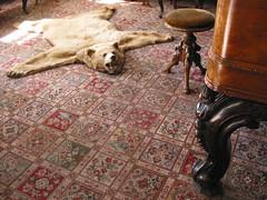 Bear Skin & Harpsichord (splorp
