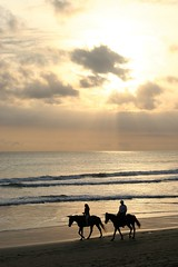 Ride in the sunset (DocAdvert) Tags: sunset bali beach evening oliver riding advert doc docadvert kramp ollikramp