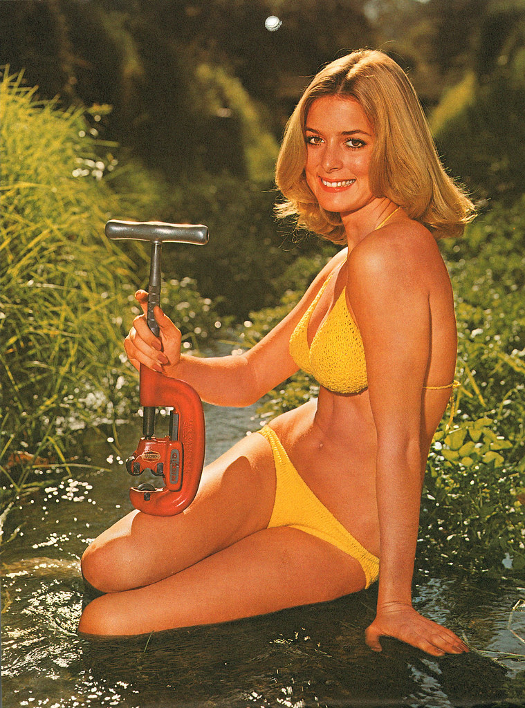 tools bikini ridgid