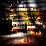 Pixelated Window View thumbnail
